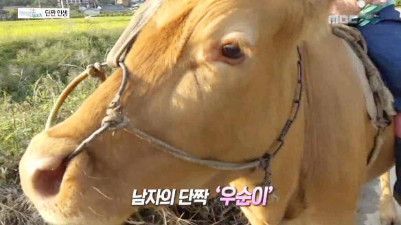 놀랄 법한 이야기53회