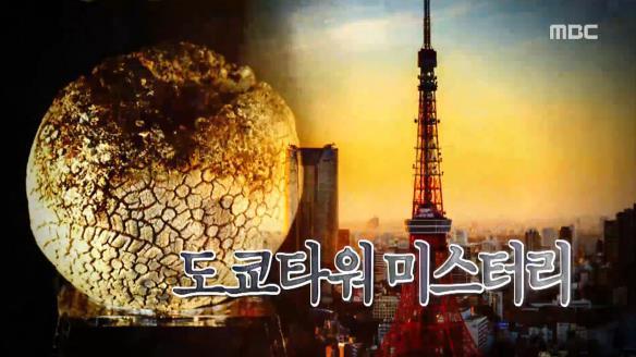 신비한 TV 서프라이즈787회