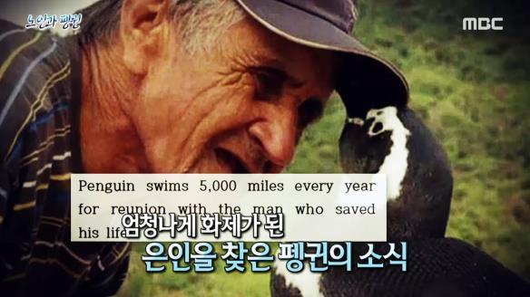신비한 TV 서프라이즈794회