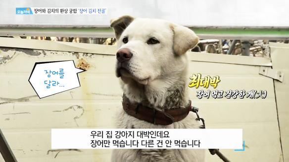 [생방송 오늘 저녁]743회