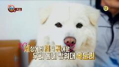 MBC 파워매거진  302회