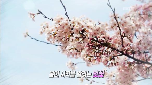 [생방송 오늘 저녁]579회
