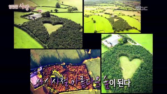 신비한 TV 서프라이즈774회