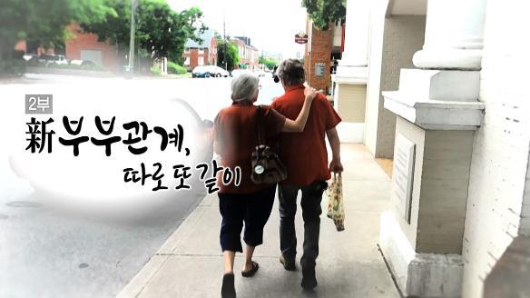 MBC 스페셜742회
