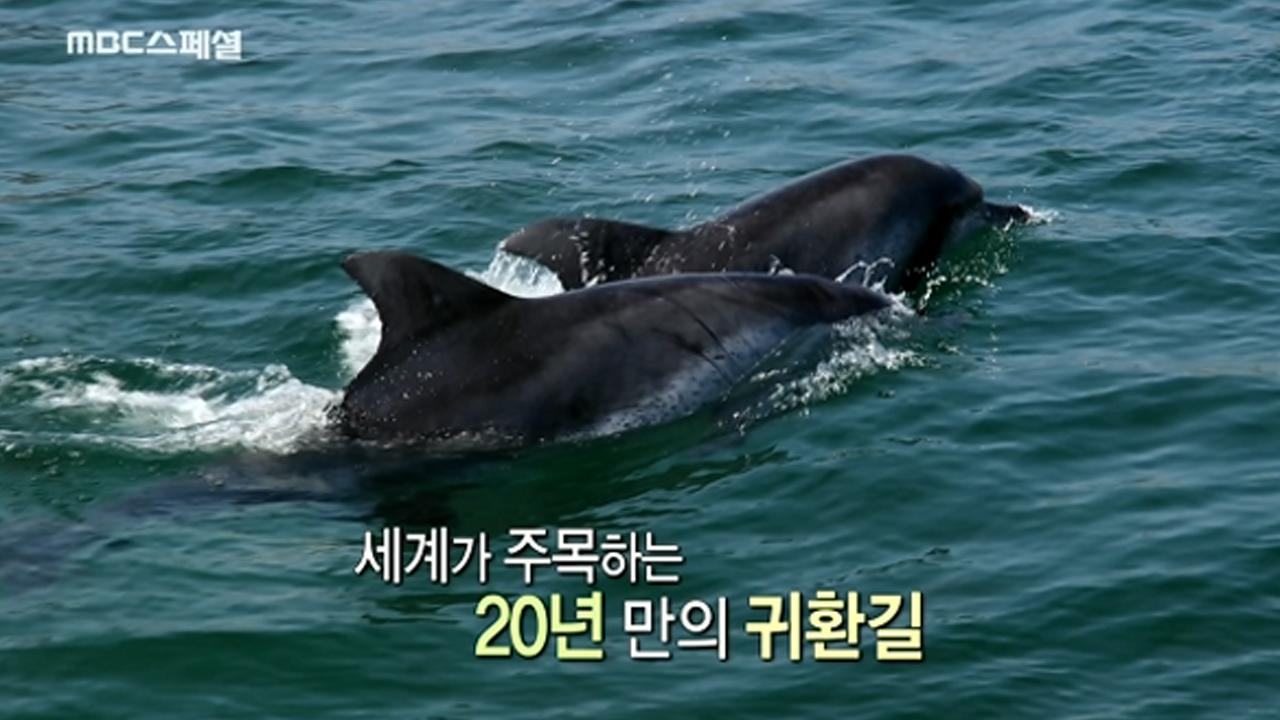 MBC 스페셜 745회