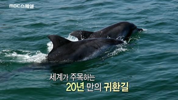 MBC 스페셜745회