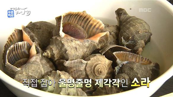 MBC 네트워크특선 푸른백세 어영차 바다야(11/11)