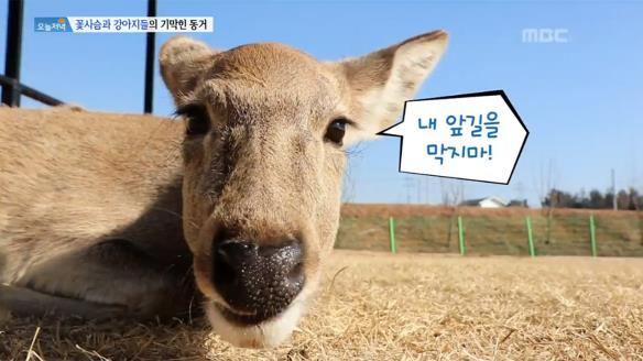 [생방송 오늘 저녁]796회