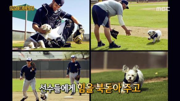 신비한 TV 서프라이즈812회