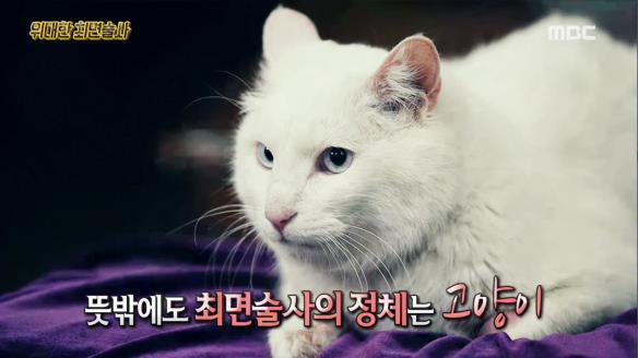 신비한 TV 서프라이즈813회