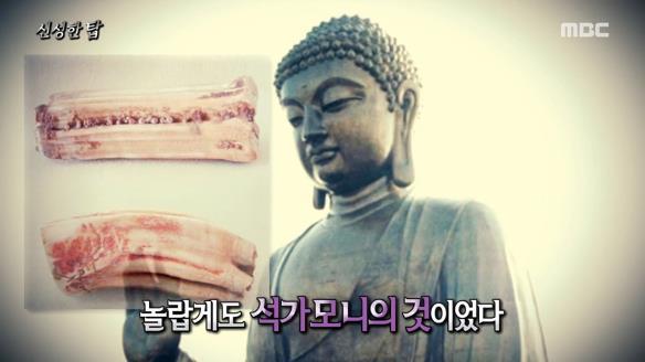 신비한 TV 서프라이즈820회