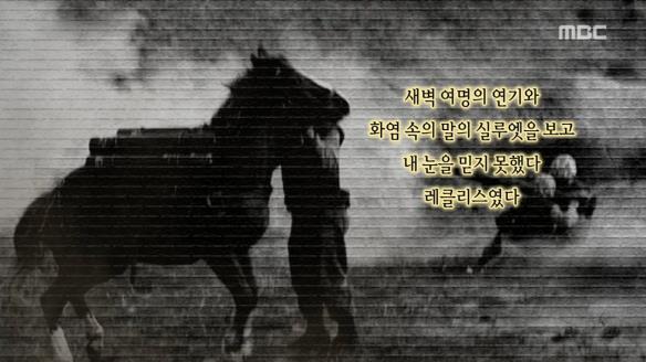 신비한 TV 서프라이즈822회