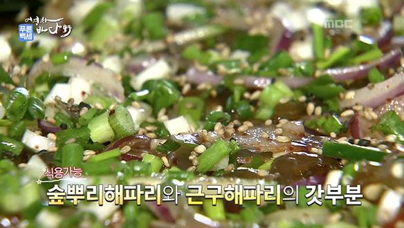 MBC 네트워크특선 푸른백세 어영차 바다야(9/16)