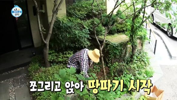 태양, 잠옷 입고 정원 가꾸기 삼매경 …'동할배'의 전원생활 [218회]