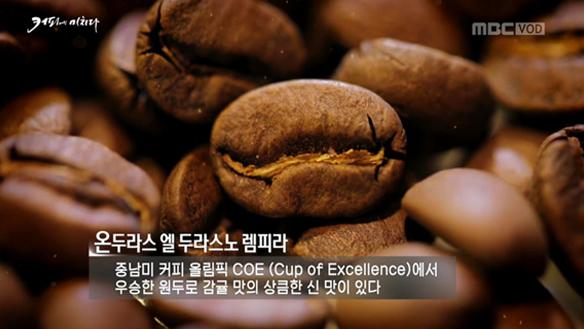 커피 전문가 5인방의 '세계 3대 커피 블라인드 테스트' [748회]