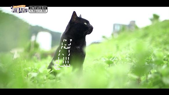 비장함을 담아 성우 녹음에 도전~!