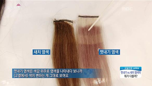 머리 염색약 비교! 멋내기vs새치 염색약, 두 제품의 차이점은? [2975회]