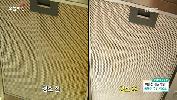 여름철 세균 안녕~ 똑똑한 주방 청소법 [3004회]