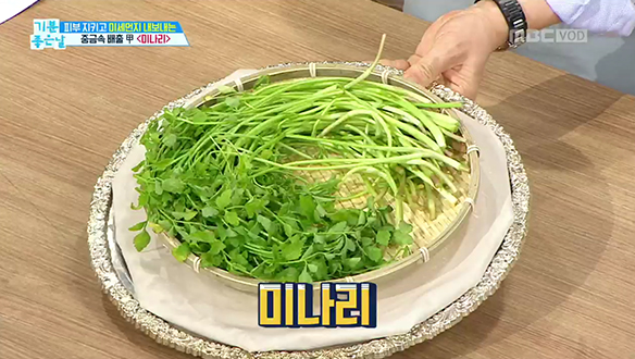 피부 방패 '미강가루'&미세먼지 배출 '미나리'