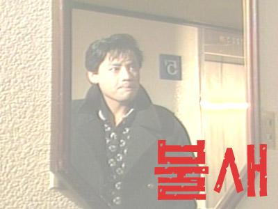 불새(1987)