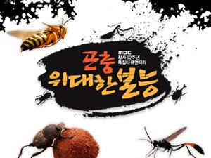 [MBC 창사특집 다큐멘터리 <곤충, 위대한 본능>]