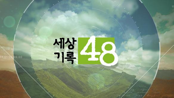 세상기록 48