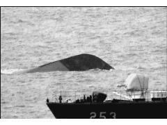 [PD 수첩][심층취재] - '긴급 취재! 천안함 침몰'