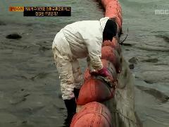[PD 수첩]의혹의 우이산호 충돌 유류오염 사고,  진실은 무엇인가?