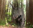 북미의 뿔공룡<br> 트리케라톱스