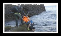 어부들이 물고기를 잡는 사진