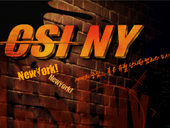 CSI NY 시즌2